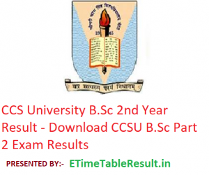 CCS University B.Sc 2nd Year Result 2019 - Download CCSU BSc Part 2 Exam Results