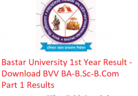 Bastar University 1st Year Result 2019 - Download BA B.Sc B.Com Part 1 Results BVV Examination