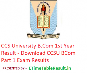CCS University B.Com 1st Year Result 2019 - Download CCSU BCom Part 1 Exam Results