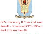 CCS University B.Com 2nd Year Result 2019 - Download CCSU BCom Part 2 Exam Results