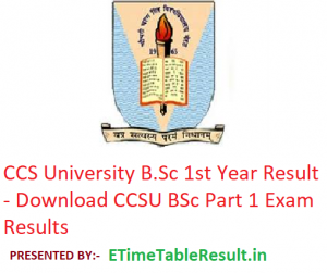CCS University B.Sc 1st Year Result 2019 - Download CCSU BSc Part 1 Exam Results
