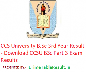 CCS University B.Sc 3rd Year Result 2019 - Download CCSU BSc Part 3 Exam Results