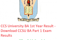 CCS University BA 1st Year Result 2019 - Download CCSU BA Part 1 Exam Results