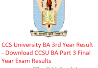CCS University BA 3rd Year Result 2019 - Download CCSU BA Part 3 Exam Results