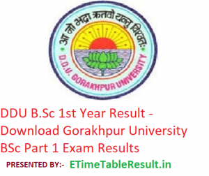 DDU B.Sc 1st Year Result 2019 - Download BSc Part 1 Exam Results Gorakhpur University