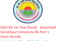 DDU BA 1st Year Result 2019 - Download Part 1 Exam Results Gorakhpur University