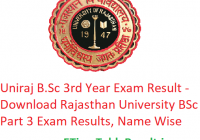 Uniraj B.Sc 3rd Year Result 2019 - Download Rajasthan University BSc Part 3 Exam Results, Name Wise