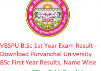 VBSPU B.Sc 1st Year Result 2019 - Download Purvanchal University BSc First Year Exam Results, Name Wise
