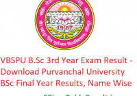 VBSPU B.Sc 3rd Year Result 2019 - Download Purvanchal University BSc Final Year Exam Results, Name Wise