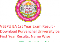 VBSPU BA 1st Year Result 2019 -Download Purvanchal University BA First Year Results Date