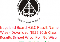 Nagaland Board HSLC Result 2019 Name Wise - Download NBSE 10th Class Exam Results School Wise, Roll No Wise