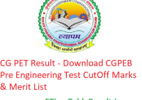 CG PET Result 2019 - Download CGPEB Pre Engineering Test CutOff Marks & Merit List
