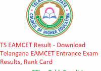 TS EAMCET Result 2019 - Download Telangana EAMCET Entrance Exam Results, Rank Card