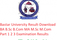 Bastar University Result 2019 - Download UG/PG Part 1st, 2nd, 3rd Year Exam Results