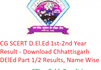 CG SCERT D.El.Ed 1st-2nd Year Result 2019 - Download Chhattisgarh DElEd Part 1/2 Exam Results, Name Wise