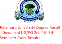Palamuru University Degree Result 2019 - Download UG/PG 2nd 4th 6th Semester Exam Results