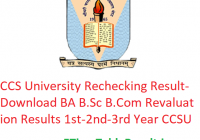 CCS University Rechecking Result 2019 - Download BA B.Sc B.Com Revaluation Results 1st-2nd-3rd Year CCSU