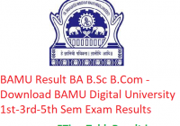 BAMU Result 2019-20 BA B.Sc B.Com - Download BAMU Digital University 1st-3rd-5th Sem Exam Results