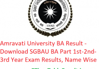 Amravati University BA Result 2020 - Download SGBAU BA Part 1st-2nd-3rd Year Exam Results, Name Wise